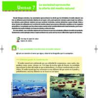 07 Unidad 7 - Sociales.pdf